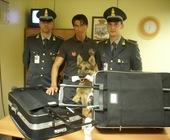 Fonte della foto: Varese News