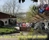 Fonte della foto: VareseNews